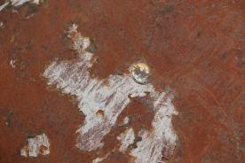 rust110
