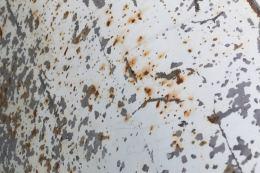 rust14