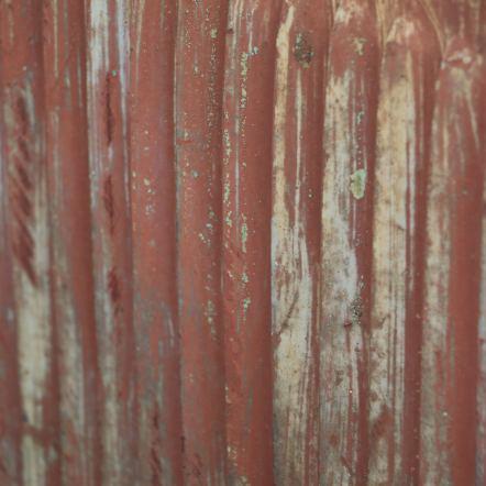 rust163