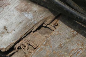 wood9