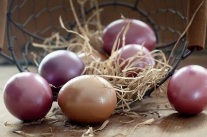 Color Easter Colored Easter Eggs Egg Basket